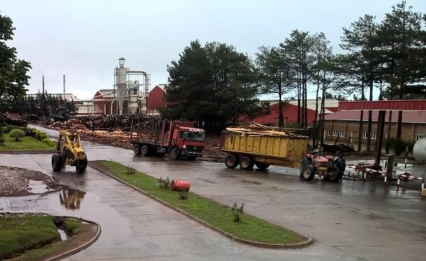Teil des Raiply-Werkes mit MDF-Produktion