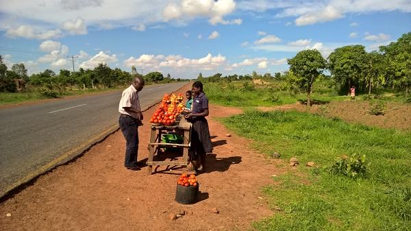 An der Straße nach Lillongwo kaufte Dominic noch ein paar Tomaten ...